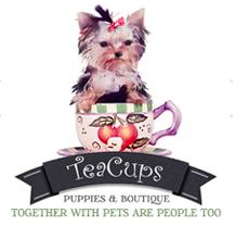 Tea Cup / ティーカップ の最新アイテムを個人輸入・海外通販
