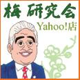 梅研究会(Yahoo店) / のショップ紹介